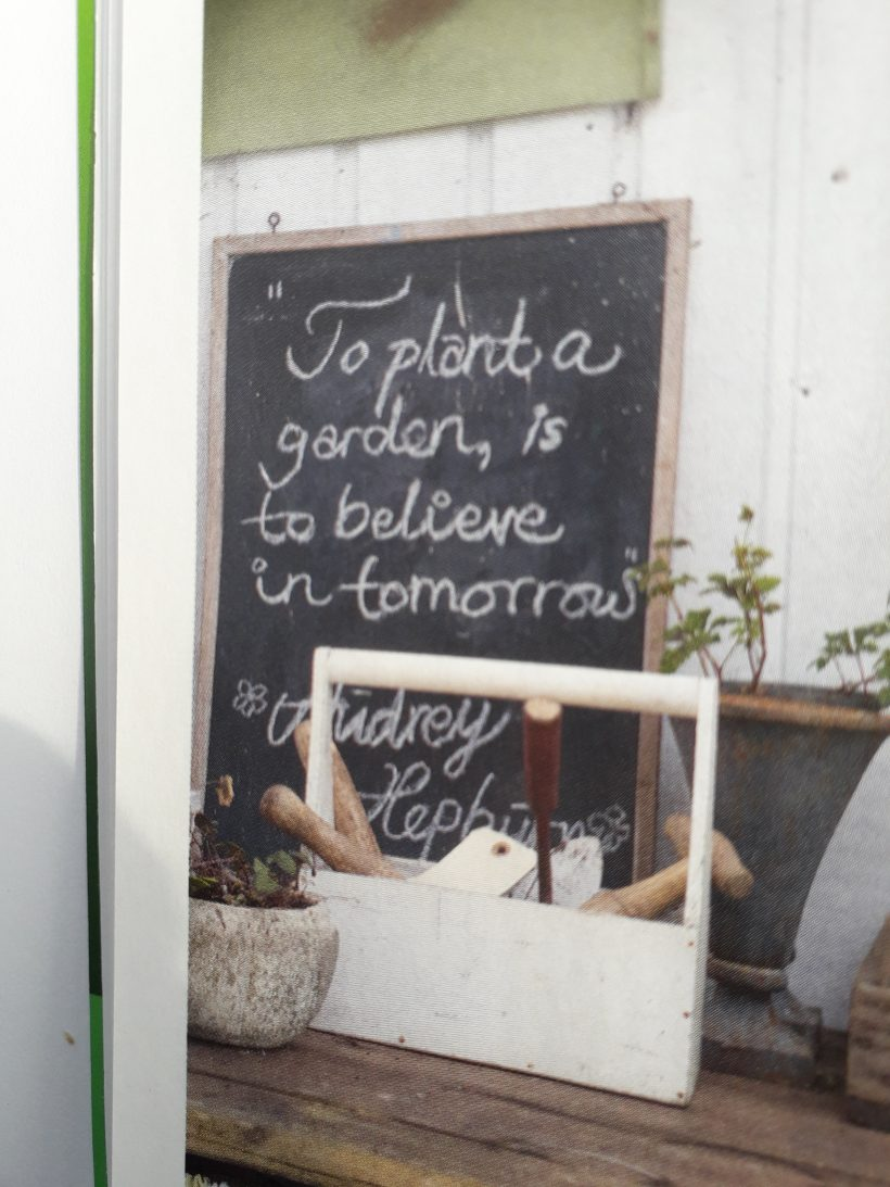 To plant a garden…………